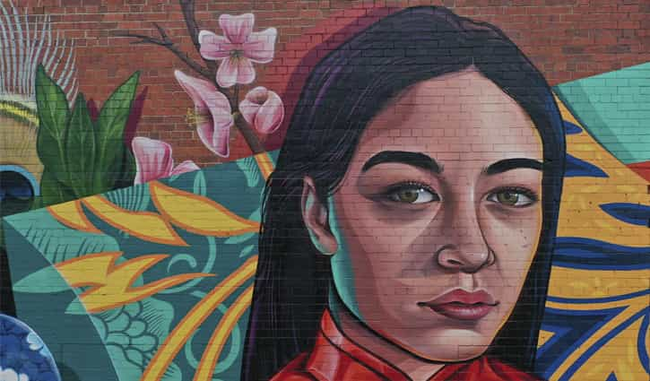 Vans The Omega – Chinatown Plaza Murals in Adelaide
